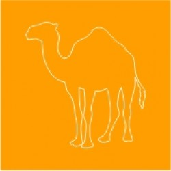 CAMELS CARE (1)