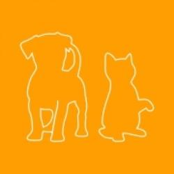 PET CARE (12)